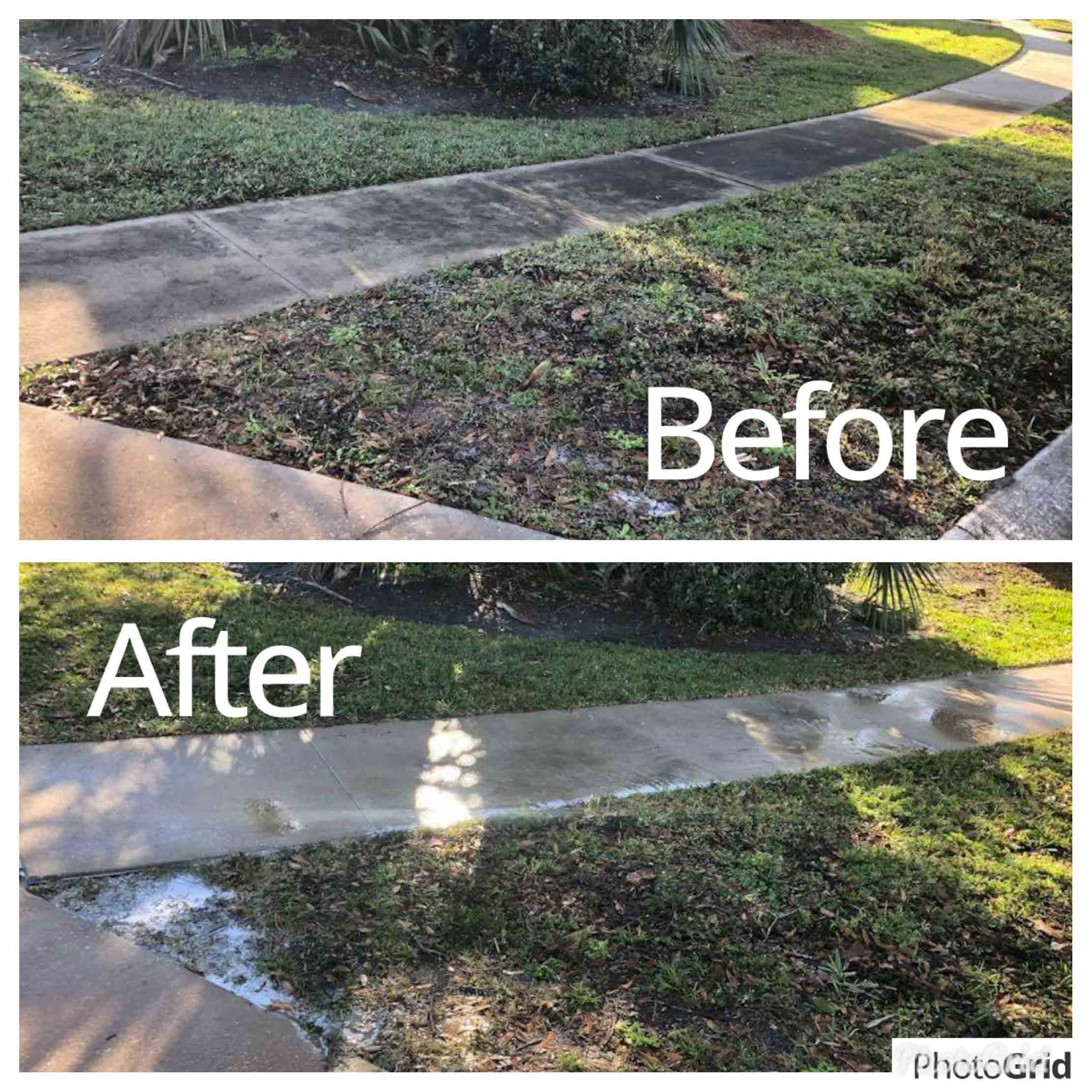 Roof Cleaning Service in Longwood, FL